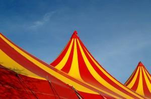 activite_cirque